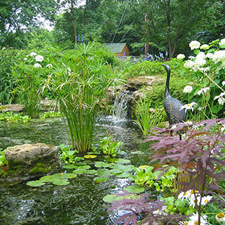 Produits de jardinage jardin dion - Il faut cultiver notre jardin analyse ...