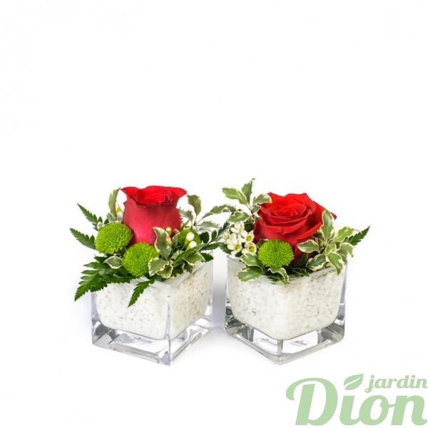 FA-0966-Duo-de-Roses.JPG