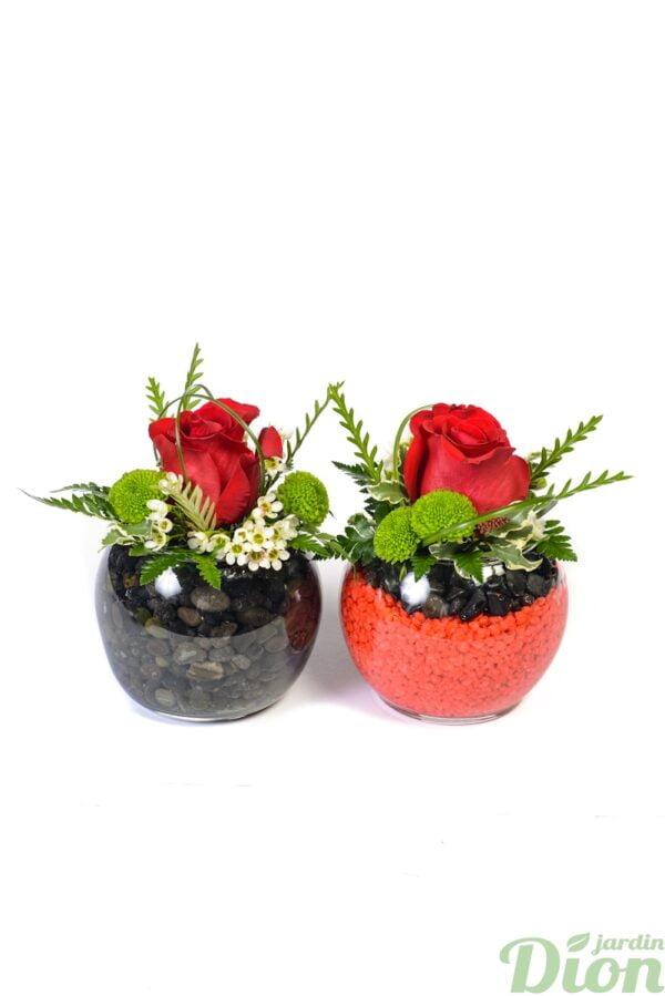 FA-0967-Duo-de-roses.JPG