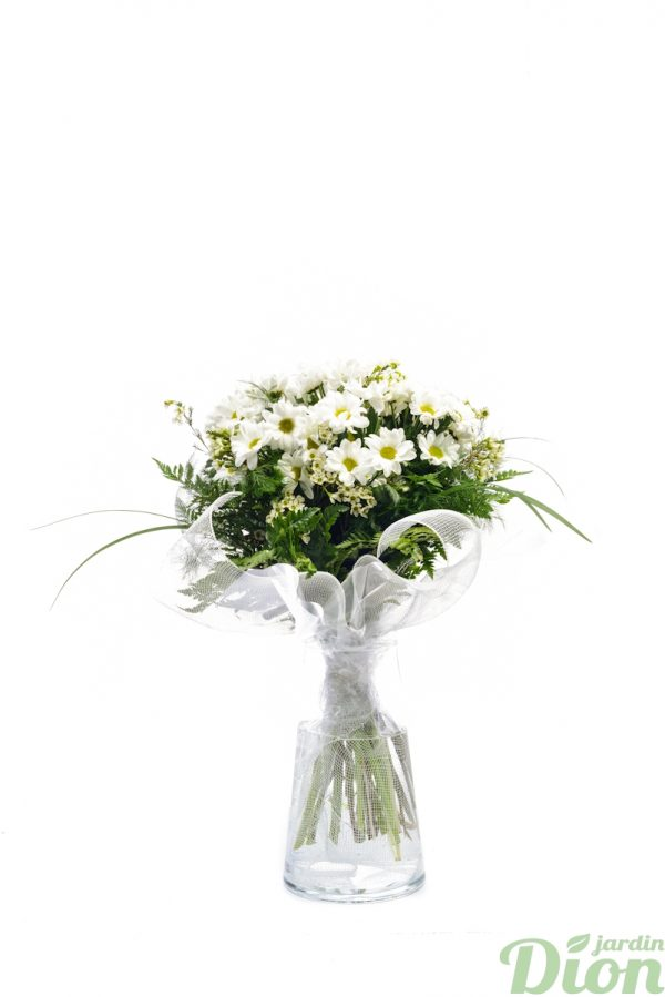FB-0991-Bouquet-de-marguerites.JPG