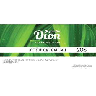 certificat 20