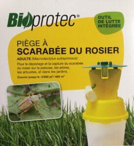Piège pour scarabées