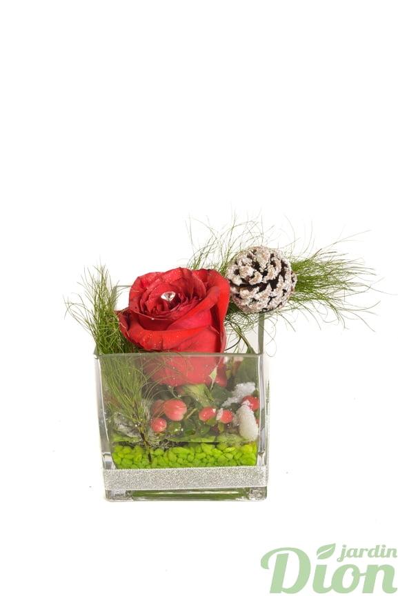 FAN-0089-rose rouge-cube de verre-noel