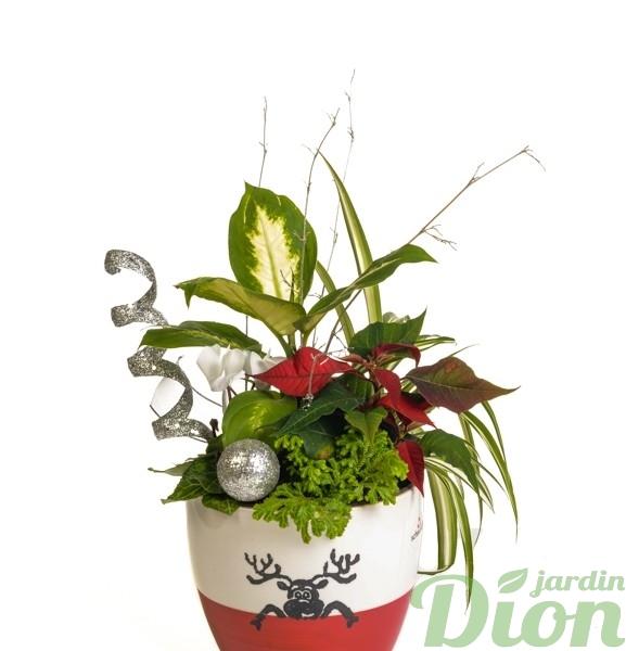 ap-0553-pot-plantes-noel-arrangment-renne-rouge et blanc-decore