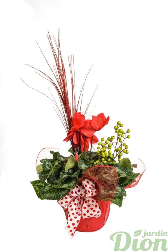 ap-0559-cyclamen-noel-boucle-décoré-rouge