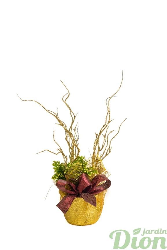pl-0558-fougere givree-noel-frosty fern-fougere-selaginelle-noel-ruban-boucle