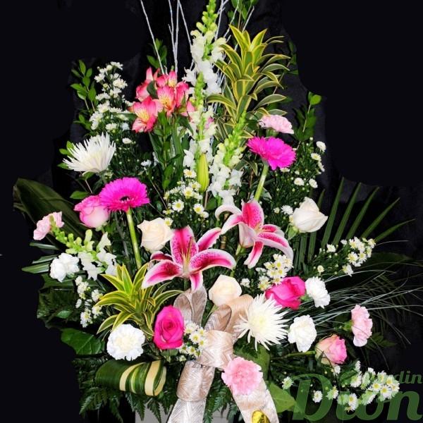 FMO-02028-memoire-affrangement-funeraire-mortuaire