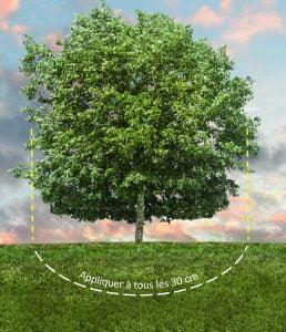 engrais-arbre