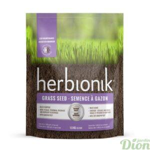 herbionik-semences-gazon-pelouse-endophytes-entretien minimum-mi-ombre