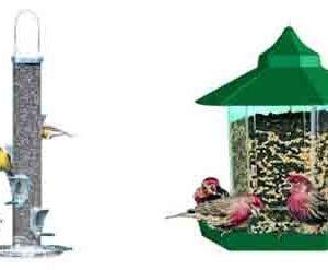 mangeoires-oiseaux-nourritures.jpg