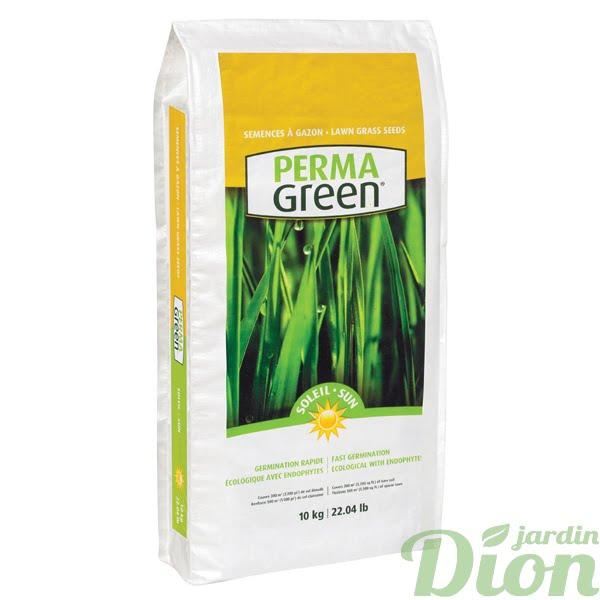 perma green-perma vert-semences-gazon-pelouse-soleil