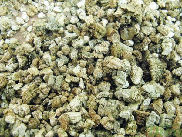vermiculite-horticole