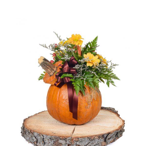 Arrangement citrouille, fleurs et ruban