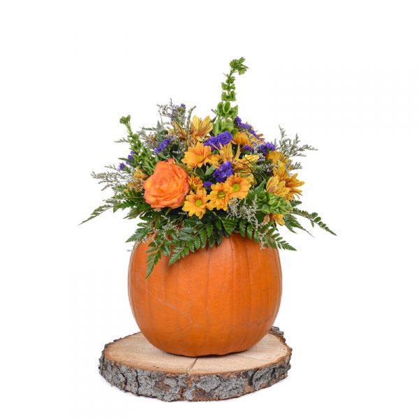 Arrangement citrouille et fleurs d'automne