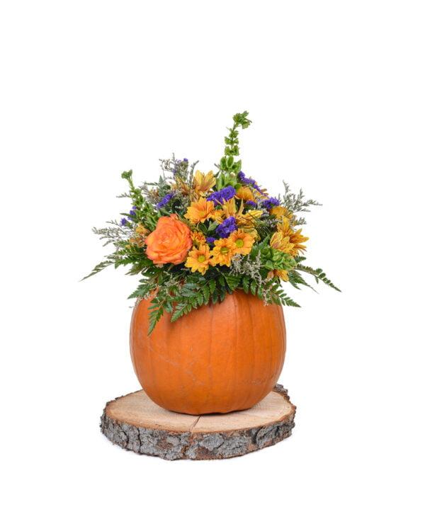 arrangement citrouille et fleurs d 39 automne jardin dion. Black Bedroom Furniture Sets. Home Design Ideas