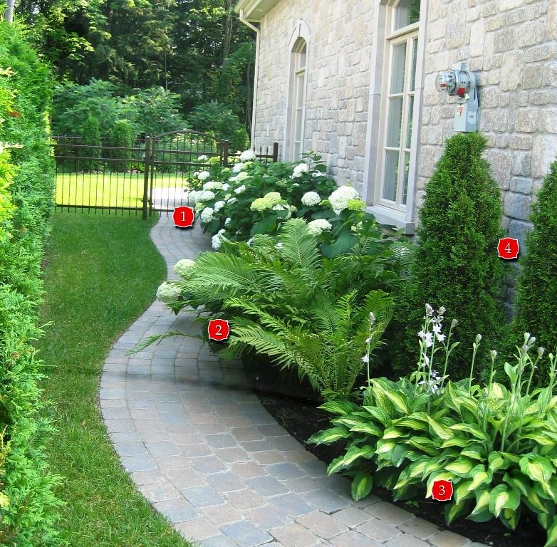 amenagement jardin ombre