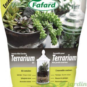 Ensemble pour terrarium et mini jardin