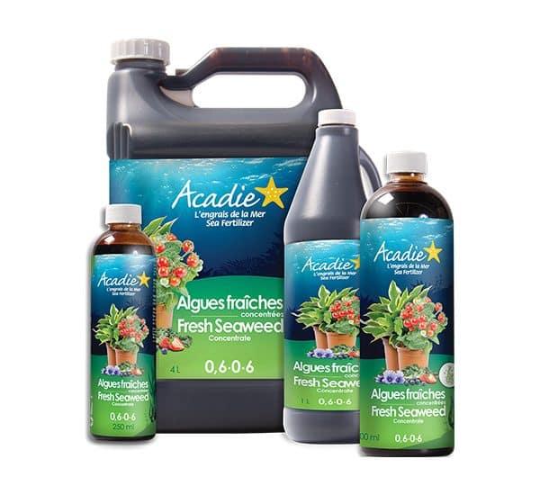 acadie_engrais_algues