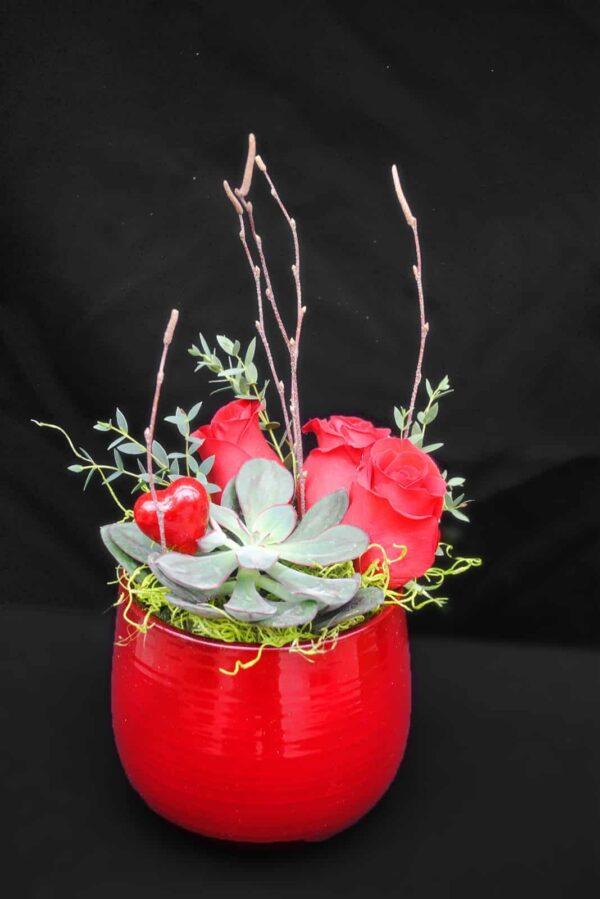 Succulent-roses rouge – 42.99