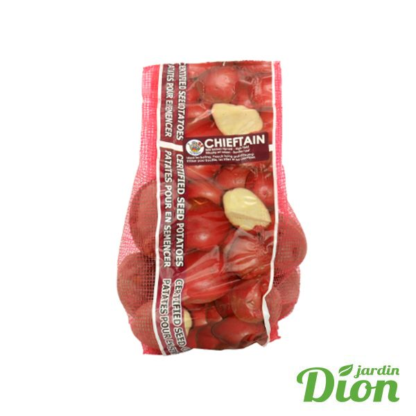 Patate rouge Chieftain 2kg (2511003D)