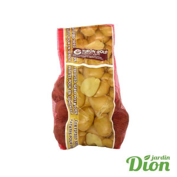 Patate yukon gold 2kg (2516823D)