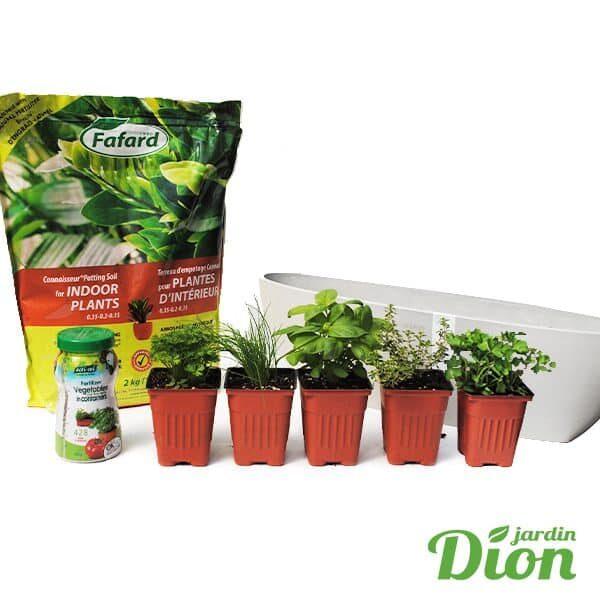 pret-a-jardiner_kit (ecopots OVAL GROS gris pale )